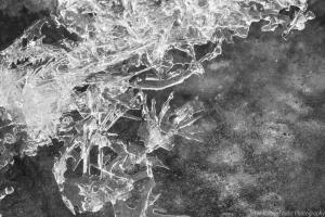 Das Eis der Drusel